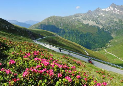 South Tyrol's most beautiful sites: Penser Joch and Jaufen Pass - Hotel Teutschhaus
