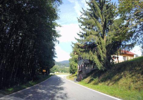 Besuch der Gäubodenstadt Straubing - Landhotel Neuhof